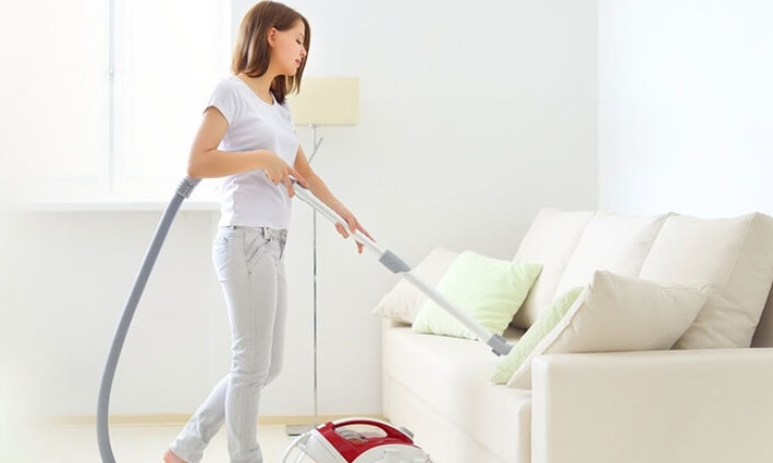 seo house cleaning