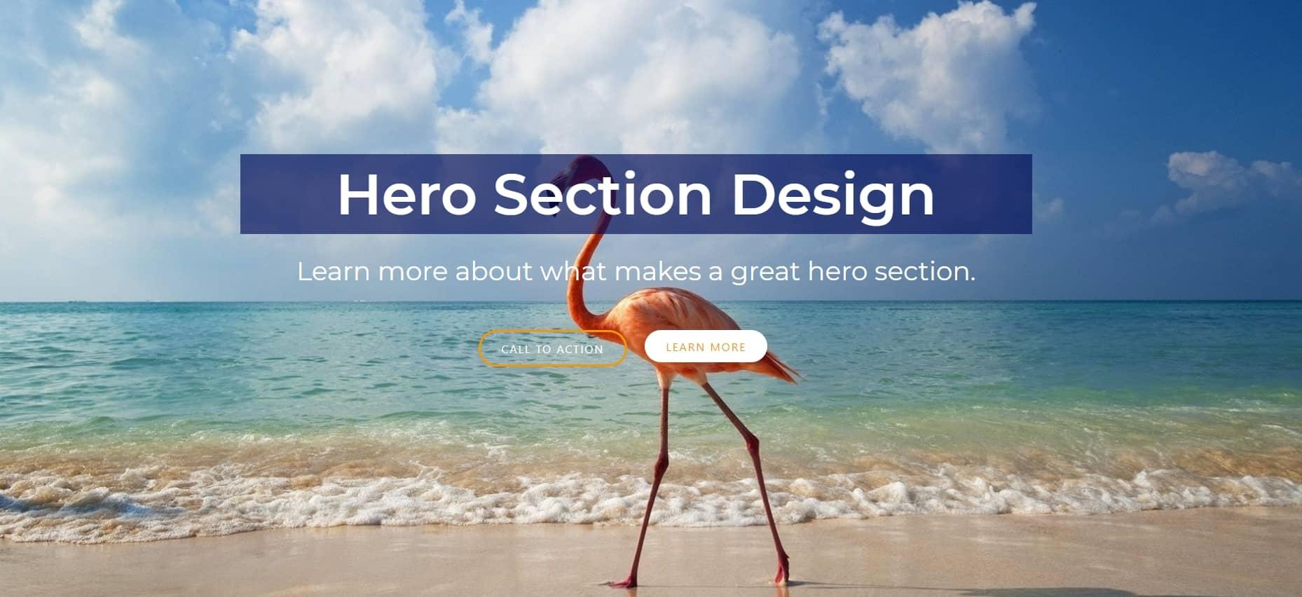 hero section design